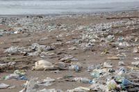 Plastikmüll und die Weltmeere – denke global, handle lokal