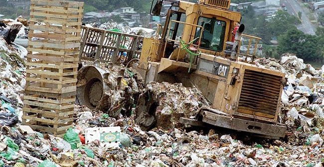 Municipal Solid Waste Treatment Disposal Sales