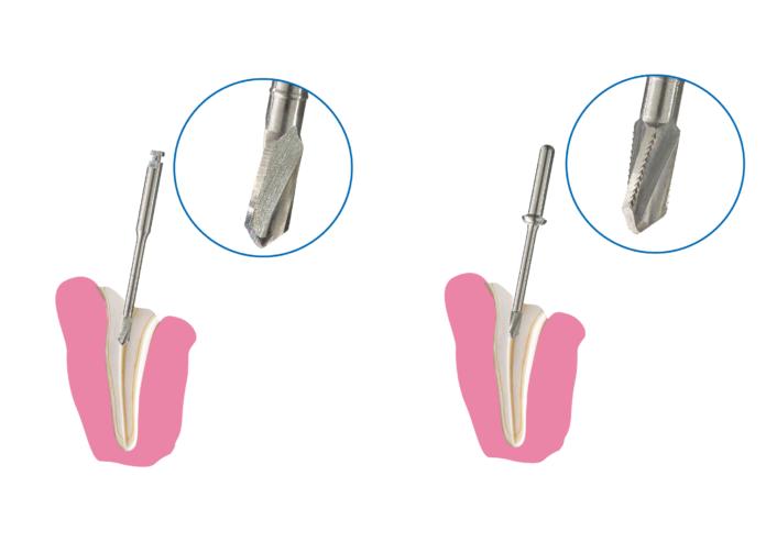 391282 696x503 - Abgebrochene Tierzähne:   Abgebrochene Zähne  bei Tieren