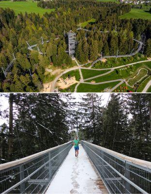 skywalk allgaeu naturerlebnisparkkleineredateigroesse - Herzensprojekt - Spendenlauf über den Baumwipfelpfad