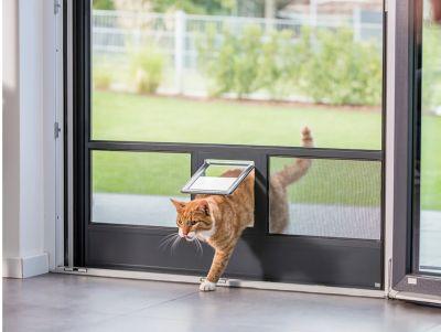 333 - Insektenschutz in den eigenen vier Wänden für Hunde- und Katzenbesitzer