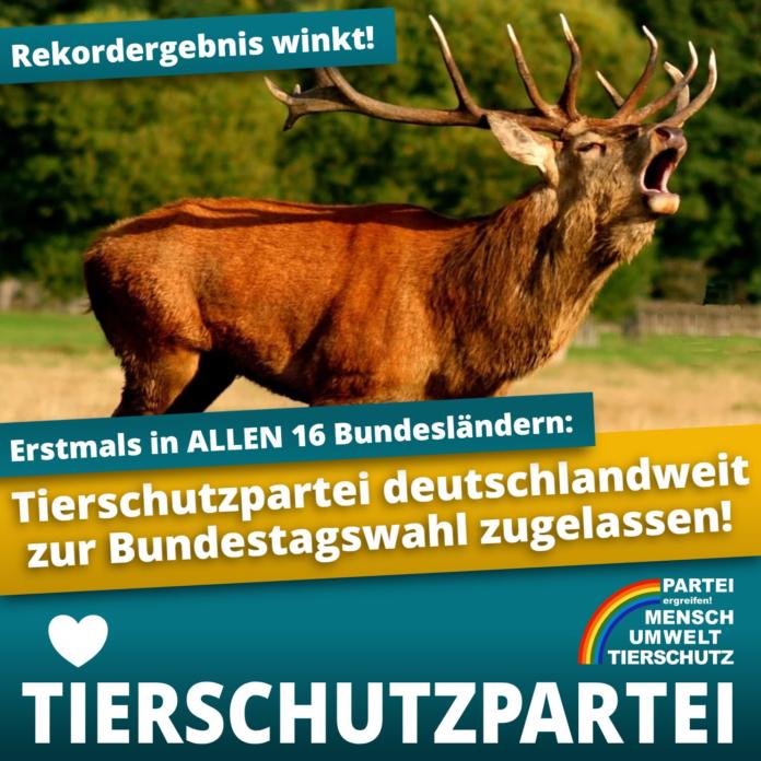 405896 696x696 - Erstmals tritt die Tierschutzpartei bundesweit an