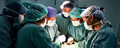 apex spine operation - Warum gibt es bei Rückenschmerzen häufig Fehldiagnosen?